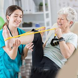 secondary feature image: women doing physical therapy